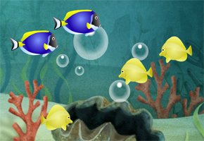 5 fish and a shell image